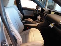 IS 250 F Sport Gray Interior